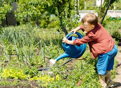 Orto per bambini - Birbe in erba Roma